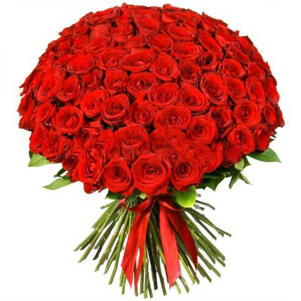 Букет из 101 красной розы