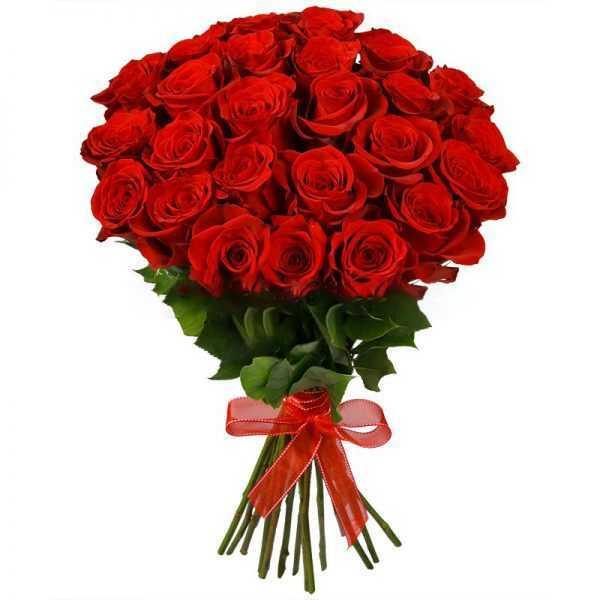 Букет из 25 красных премиум роз