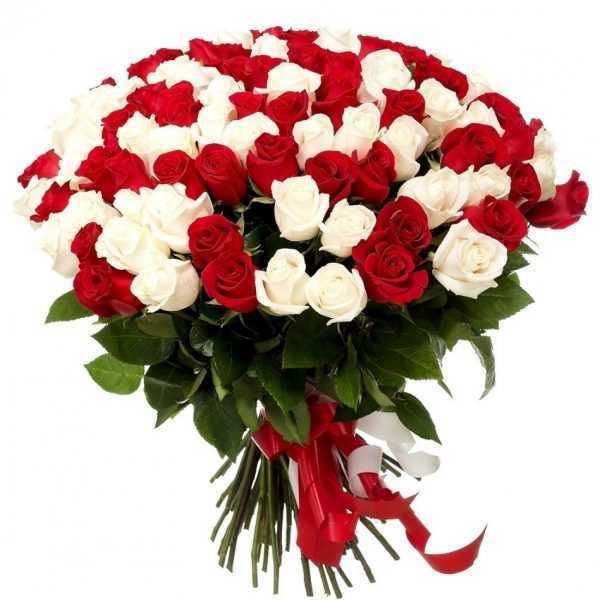 Букет из красно-белых роз