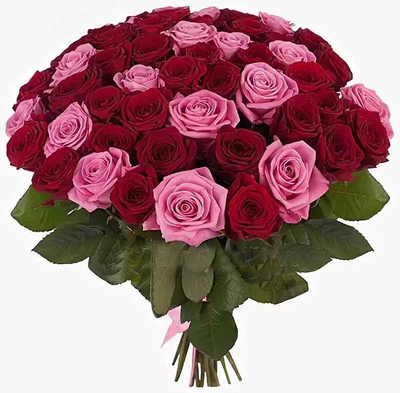 Букет из красно розовых роз